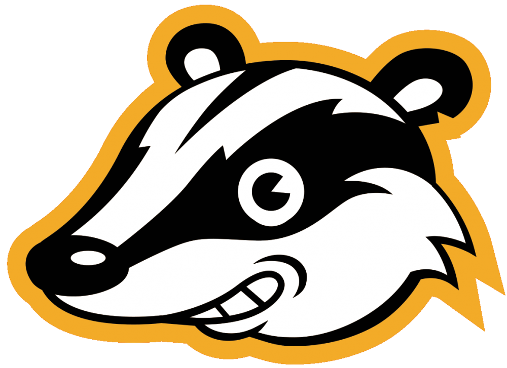 The logo and icon for Privacy Badger, featuring an illustration of a smiling badger head with an orange outer glow.