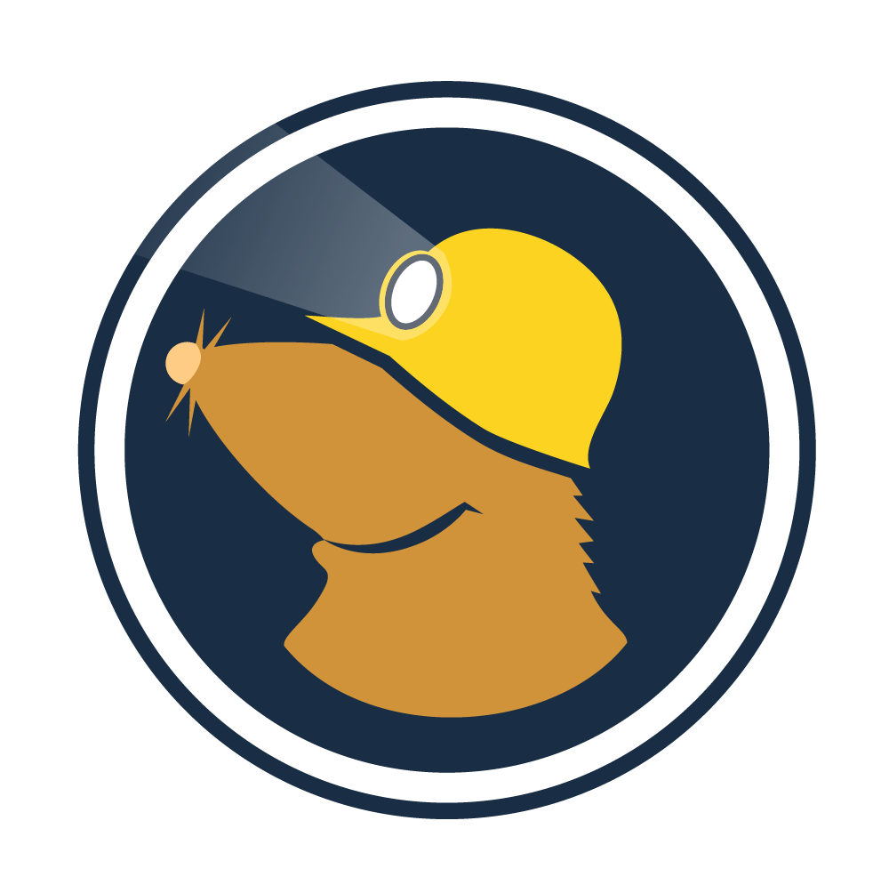 The logo for Mullvad, represented by a mole wearing a hard hat with a lamp.
