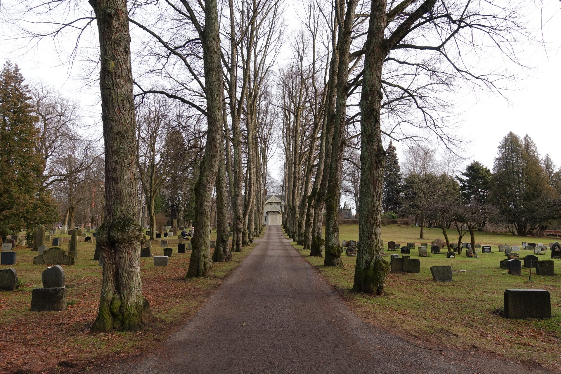 A picture of a pathway through a graveyard, lined either side with a row of trees and gravestones. At the end of the pathway is a wooden building.