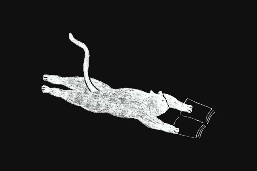 An illustration of a cat lying down reading a book
